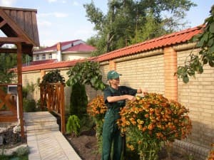 услуги садовника в Ялте, Алуште